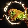 Цирки в Шарлыке